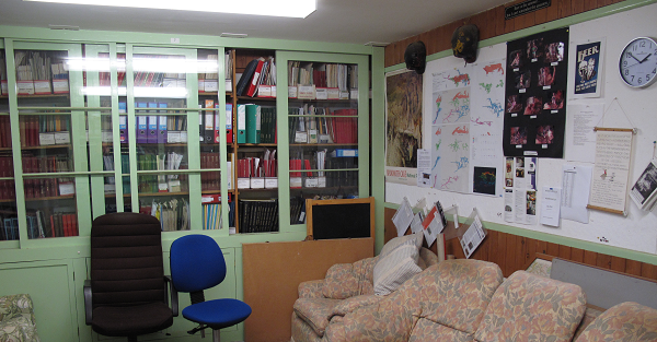 library1-600x313